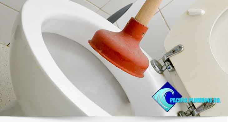 Clogged Toilet Repair Services in Fresno